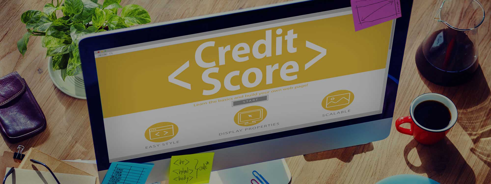 Establish Your Credit